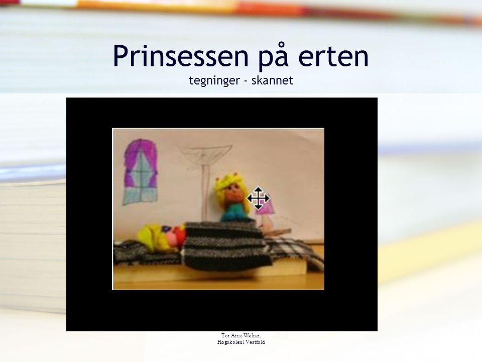 Tor Arne Wølner, Høgskolen i Vestfold Prinsessen på erten tegninger - skannet