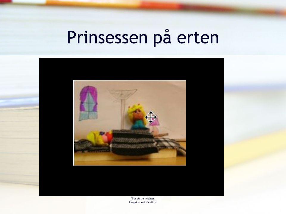 Tor Arne Wølner, Høgskolen i Vestfold Prinsessen på erten