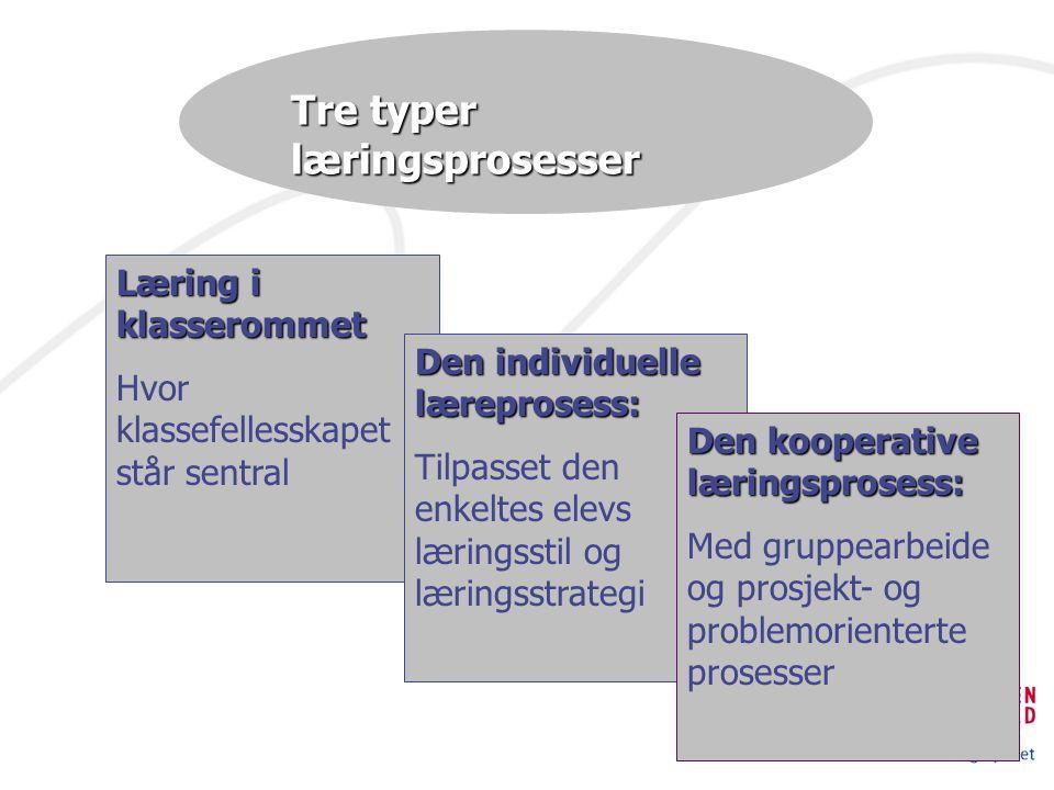 Tre typer læringsprosesser Læring i klasserommet Hvor klassefellesskapet står sentral Den individuelle læreprosess: Tilpasset den enkeltes elevs læringsstil og læringsstrategi Den kooperative læringsprosess: Med gruppearbeide og prosjekt- og problemorienterte prosesser
