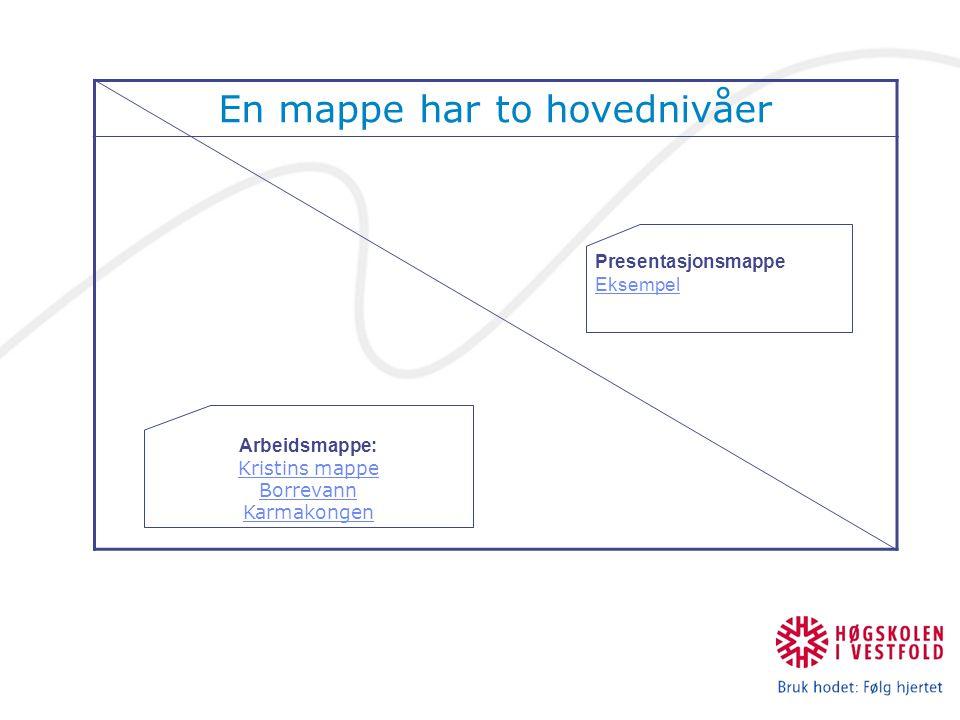 En mappe har to hovednivåer Arbeidsmappe: Kristins mappe Kristins mappe Borrevann Karmakongen Presentasjonsmappe Eksempel Eksempel