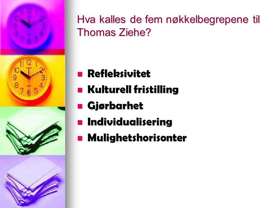 Hva kalles de fem nøkkelbegrepene til Thomas Ziehe? Refleksivitet Refleksivitet Kulturell fristilling Kulturell fristilling Gjørbarhet Gjørbarhet Indi