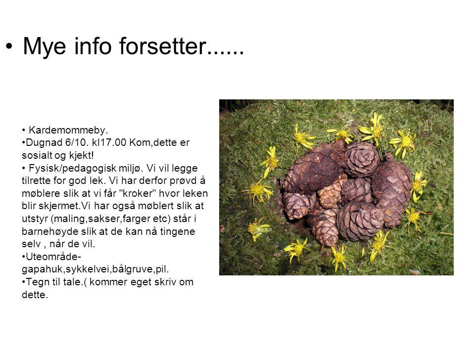 Mye info forsetter...... Kardemommeby. Dugnad 6/10.