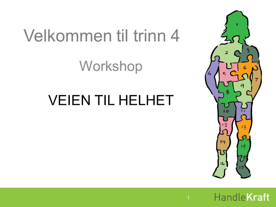 Program for Workshopdagene Dagsplan DAG 1 09.30 LUKE 1 10.45Pause 11.00LUKE 2 12.00Lunsj 12.45 LUKE 3 14.00 Plenum 15.30Slutt 2