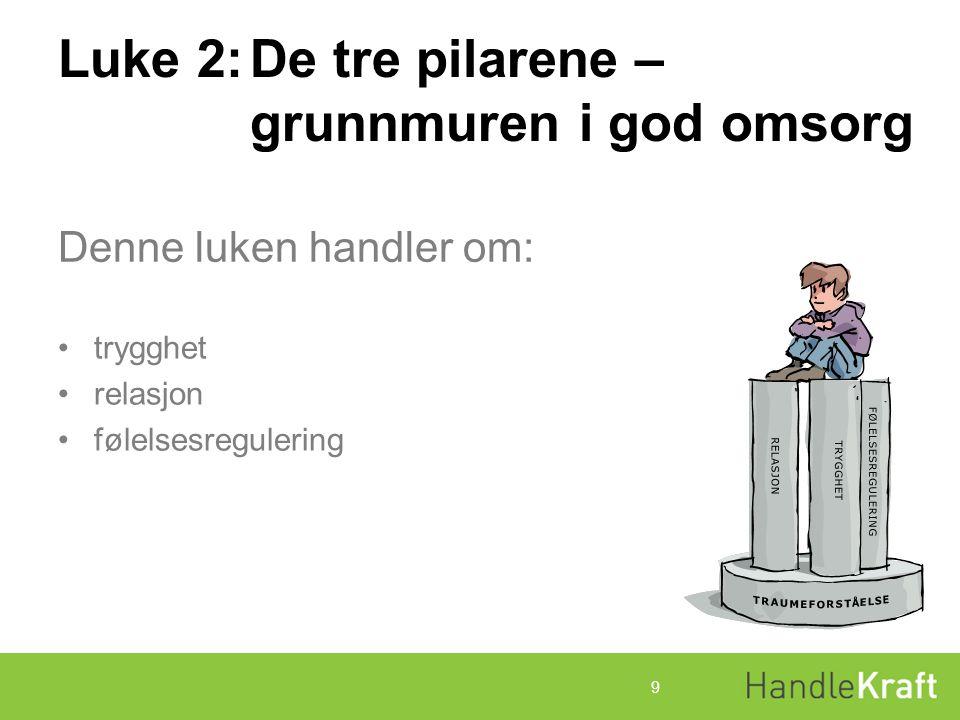 Luke 2:De tre pilarene – grunnmuren i god omsorg å skape trygghet å bygge relasjon å bidra til følelsesregulering 10