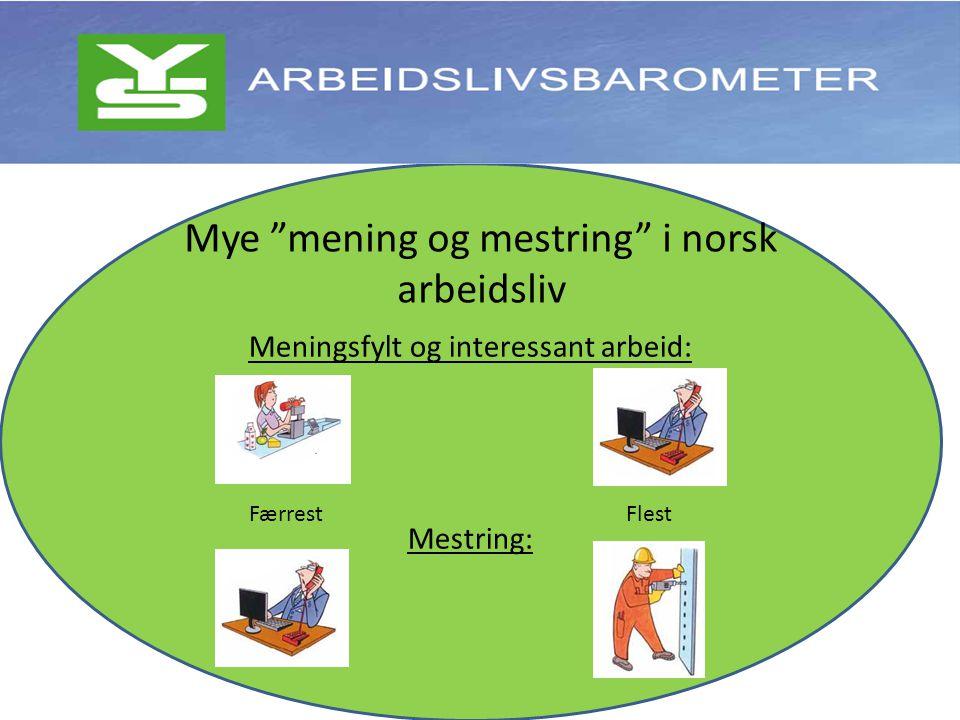 Meningsfylt og interessant arbeid: Mestring: Mye mening og mestring i norsk arbeidsliv FlestFærrest