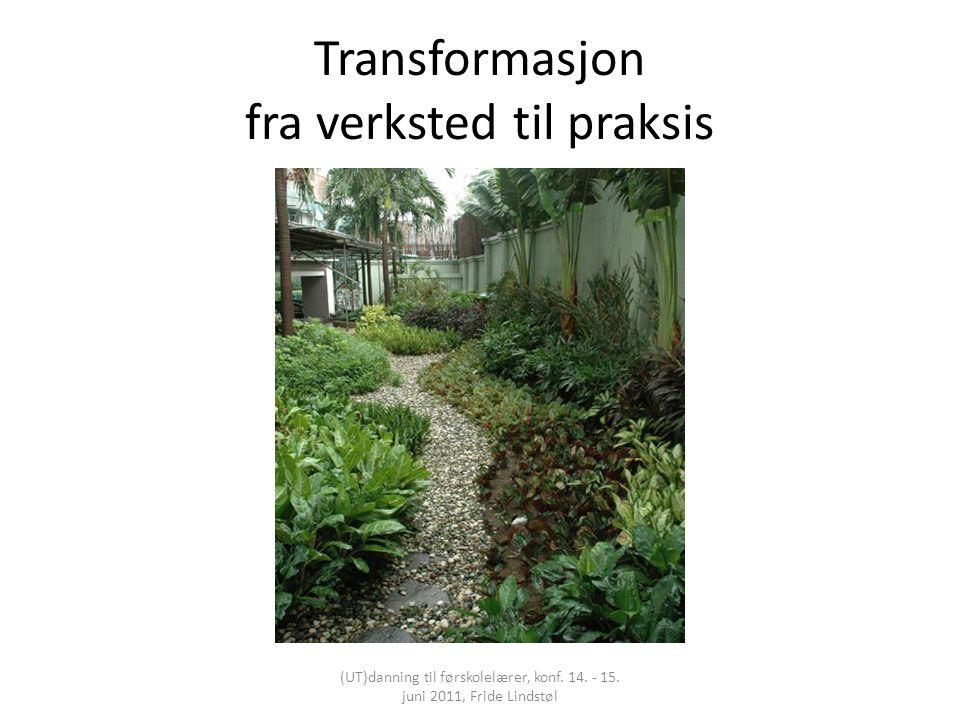 Transformasjon fra verksted til praksis (UT)danning til førskolelærer, konf. 14. - 15. juni 2011, Fride Lindstøl