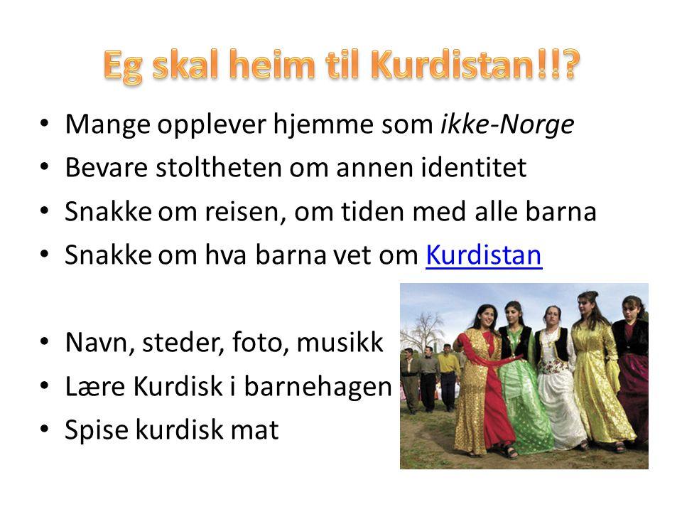 Mange opplever hjemme som ikke-Norge Bevare stoltheten om annen identitet Snakke om reisen, om tiden med alle barna Snakke om hva barna vet om Kurdist