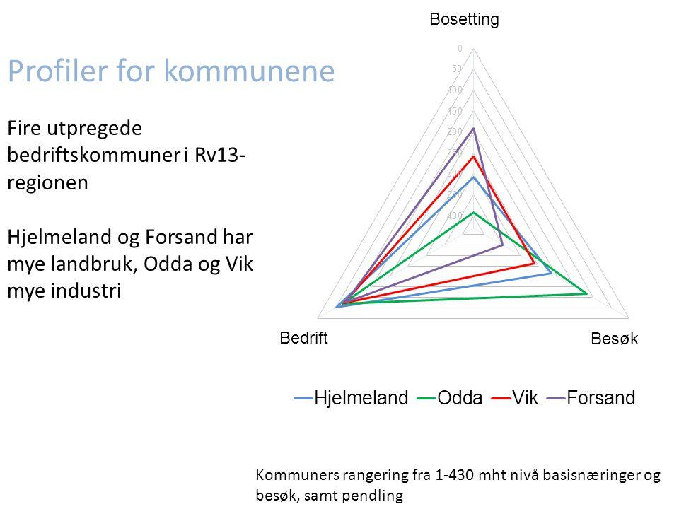 Fire utpregede bedriftskommuner i Rv13- regionen Hjelmeland og Forsand har mye landbruk, Odda og Vik mye industri Kommuners rangering fra 1-430 mht nivå basisnæringer og besøk, samt pendling Profiler for kommunene