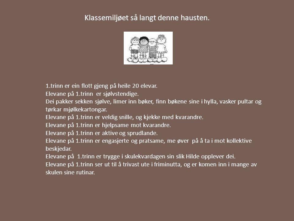 Presentasjon av læreverk i mattematikk Me brukar læreverket multi i mattematikk, utgitt av gyldendal.