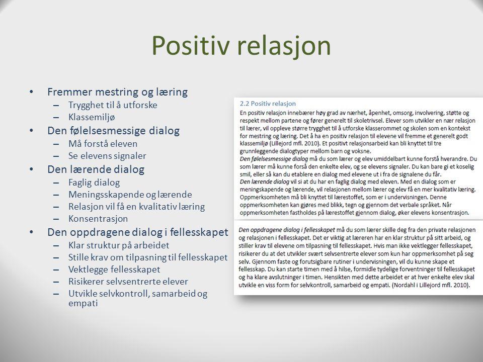 Introduksjon Hva er en relasjon? Mini-utviklingsmiljø – Utvikle seg på kort og langt sikt Sameroff i Lillejord Solveig Ryeng – Makt, forskjeller i kom