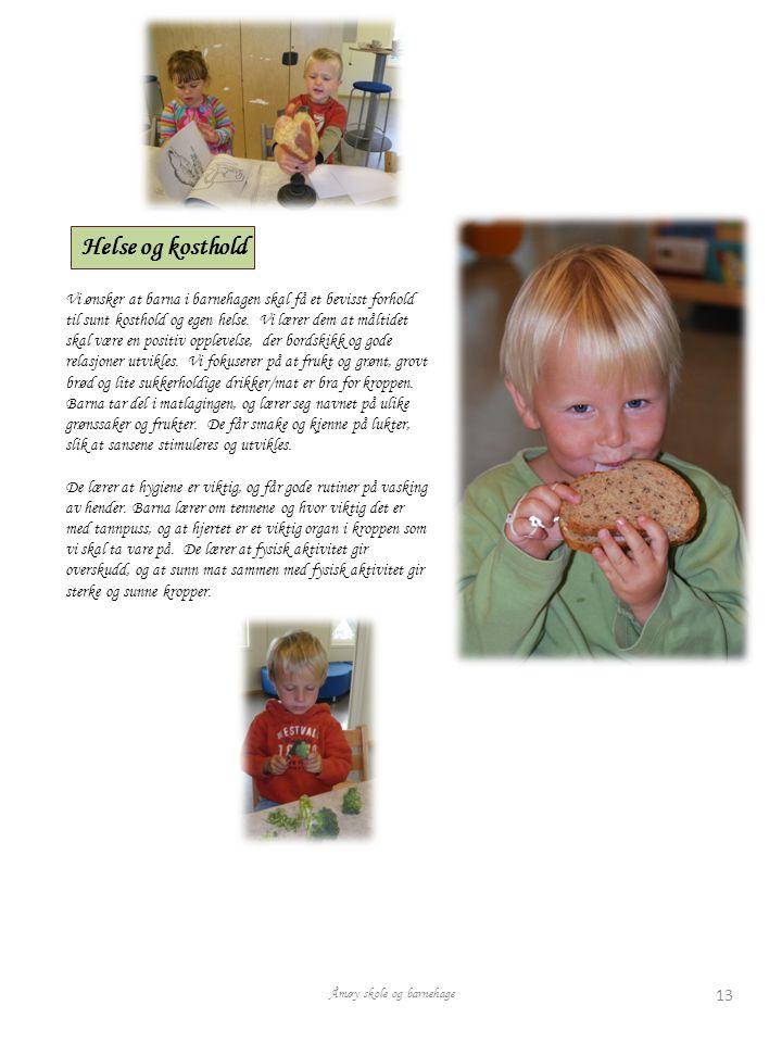Helse og kosthold Vi ønsker at barna i barnehagen skal få et bevisst forhold til sunt kosthold og egen helse.