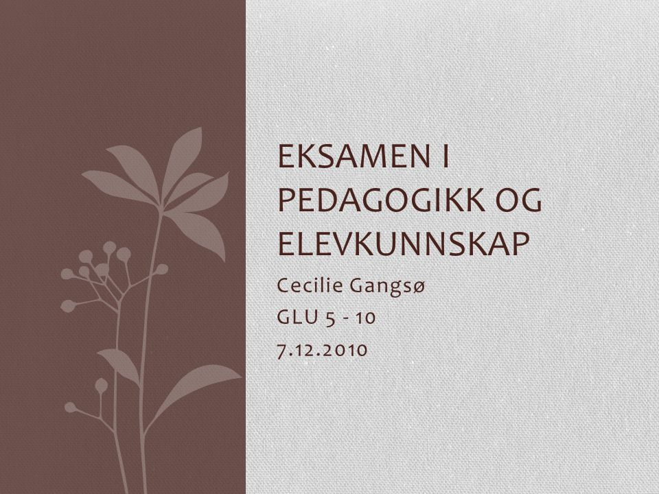 Cecilie Gangsø GLU 5 - 10 7.12.2010 EKSAMEN I PEDAGOGIKK OG ELEVKUNNSKAP