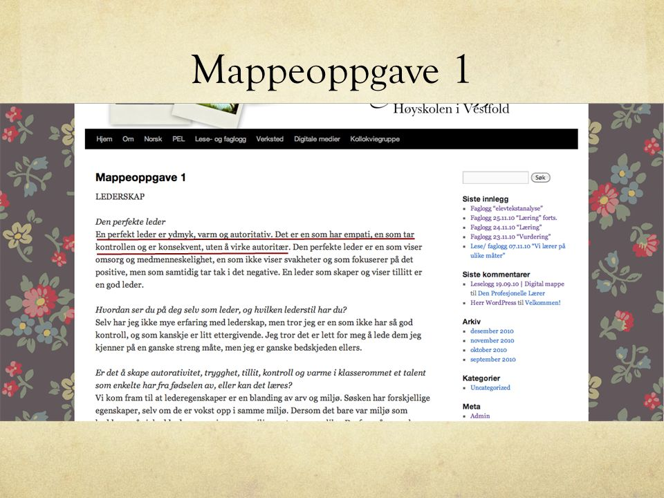 Mappeoppgave 1