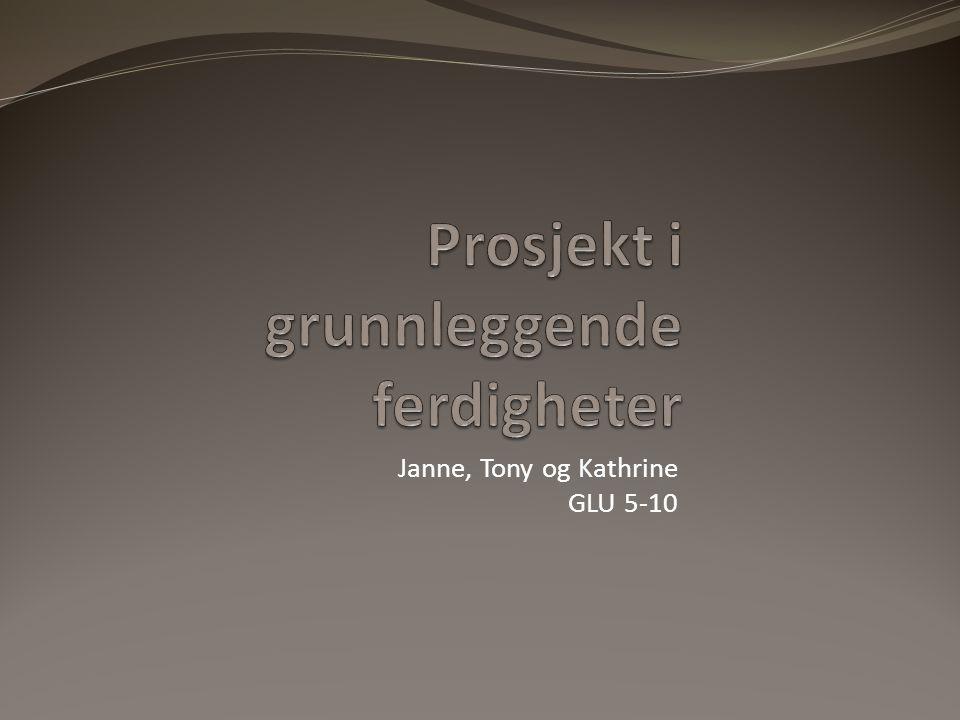 Janne, Tony og Kathrine GLU 5-10