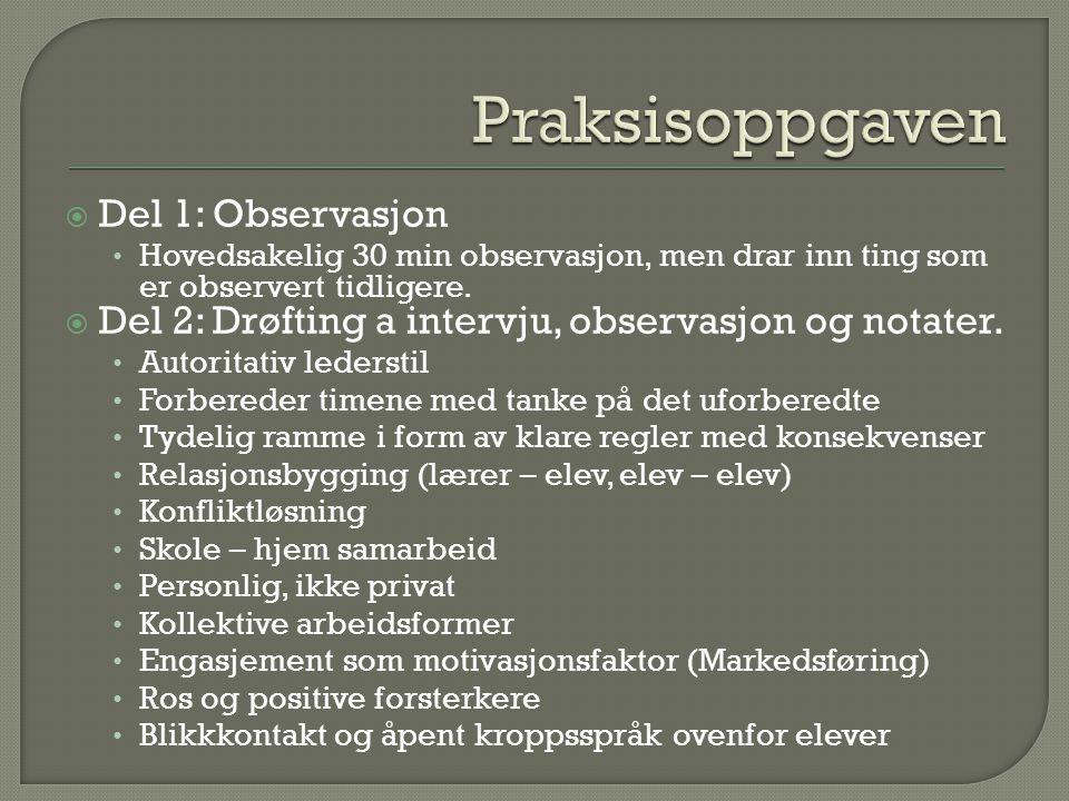  Del 1: Observasjon Hovedsakelig 30 min observasjon, men drar inn ting som er observert tidligere.