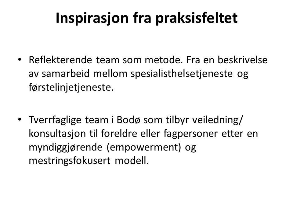Inspirasjon fra praksisfeltet Reflekterende team som metode. Fra en beskrivelse av samarbeid mellom spesialisthelsetjeneste og førstelinjetjeneste. Tv