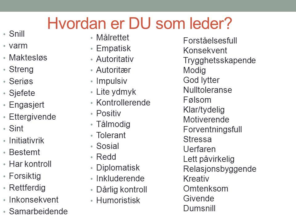 Hvordan er DU som leder.