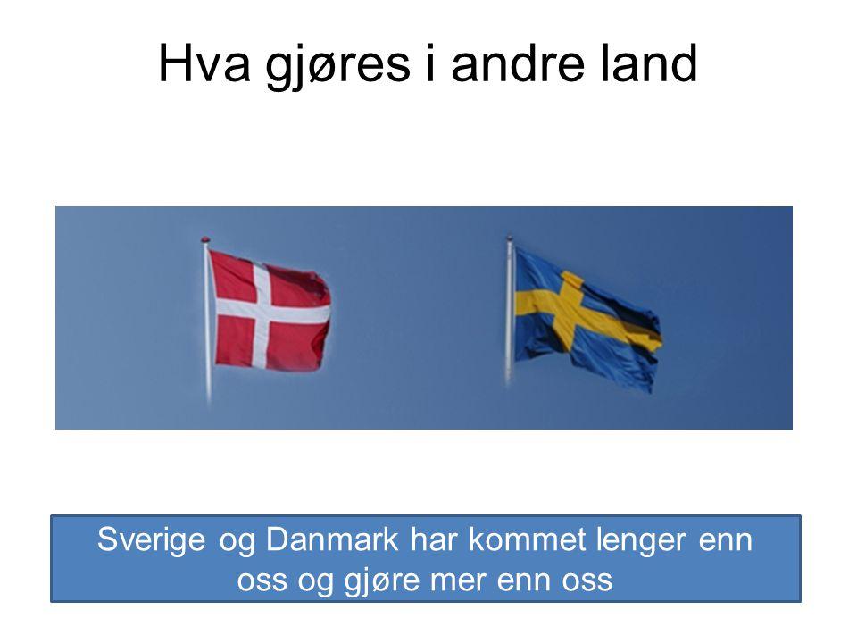 Hva gjøres i andre land Sverige og Danmark har kommet lenger enn oss og gjøre mer enn oss