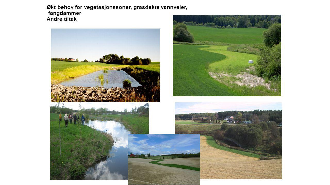 Økt behov for vegetasjonssoner, grasdekte vannveier, fangdammer Andre tiltak