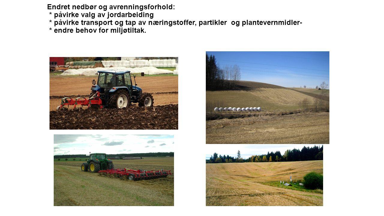 Endret nedbør og avrenningsforhold: * påvirke valg av jordarbeiding * påvirke transport og tap av næringstoffer, partikler og plantevernmidler- * endre behov for miljøtiltak.