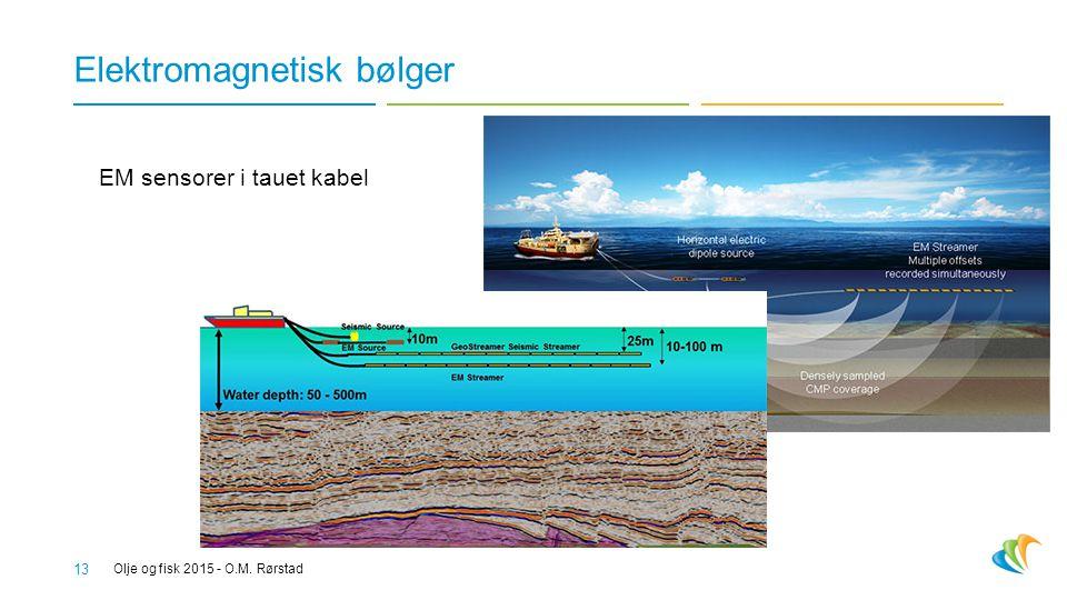 Elektromagnetisk bølger Olje og fisk 2015 - O.M. Rørstad 13 EM sensorer i tauet kabel