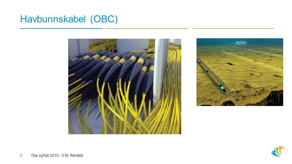Havbunnskabel (OBC) Olje og fisk 2015 - O.M. Rørstad 9