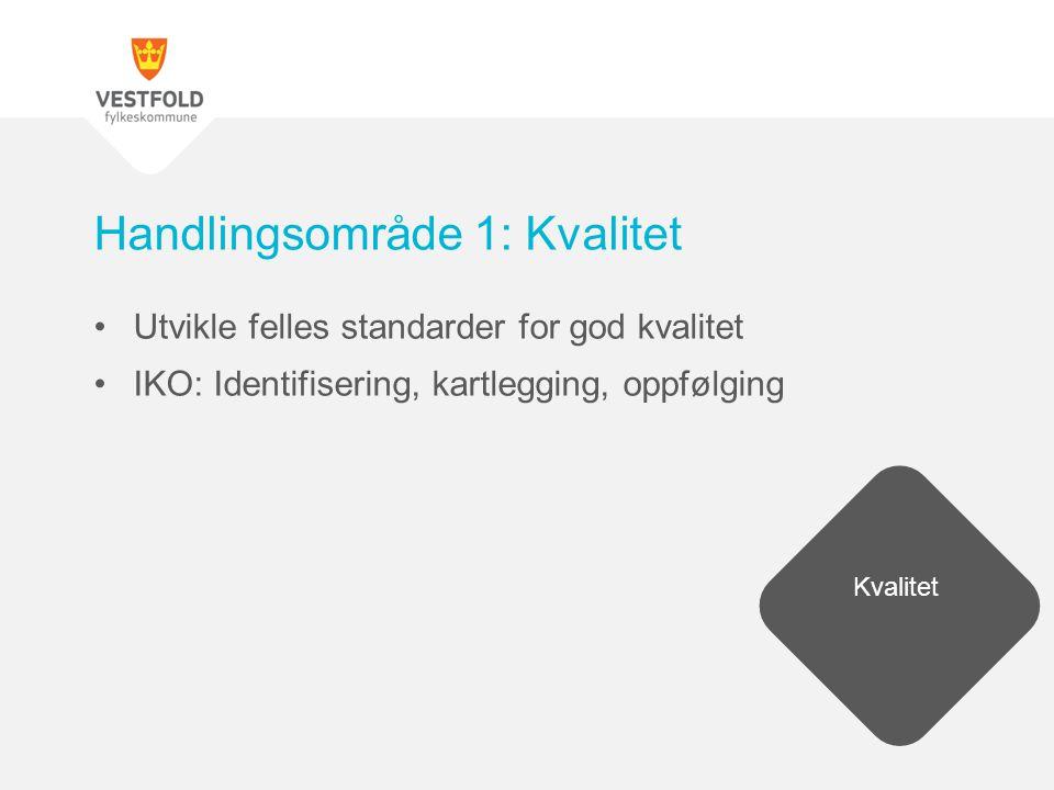Utvikle felles standarder for god kvalitet IKO: Identifisering, kartlegging, oppfølging Handlingsområde 1: Kvalitet Kvalitet