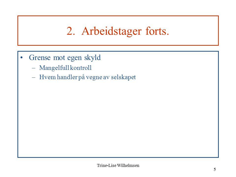 Trine-Lise Wilhelmsen 5 2. Arbeidstager forts.