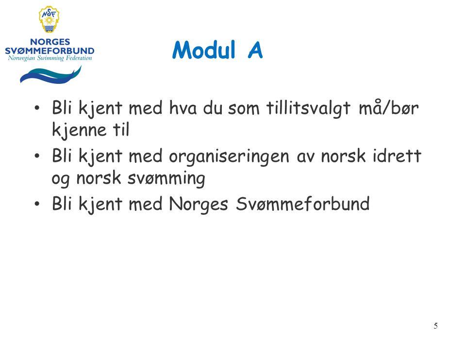 Modul A Bli kjent med hva du som tillitsvalgt må/bør kjenne til Bli kjent med organiseringen av norsk idrett og norsk svømming Bli kjent med Norges Svømmeforbund 5