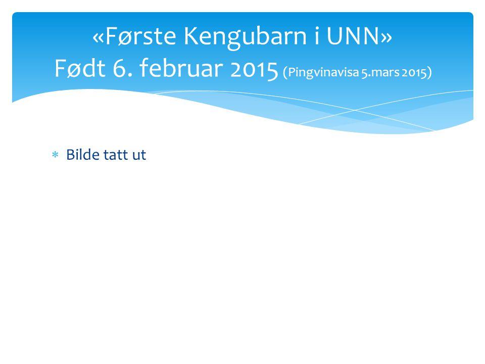 «Første Kengubarn i UNN» Født 6. februar 2015 (Pingvinavisa 5.mars 2015)  Bilde tatt ut