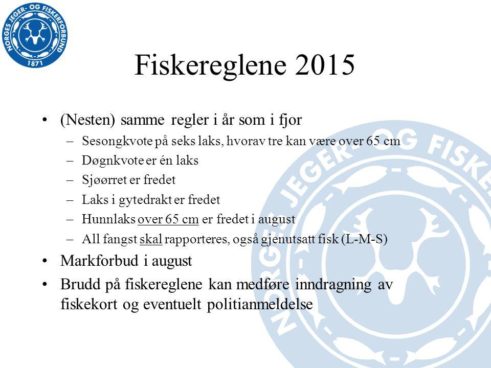Fiskereglene 2015 (Nesten) samme regler i år som i fjor –Sesongkvote på seks laks, hvorav tre kan være over 65 cm –Døgnkvote er én laks –Sjøørret er f