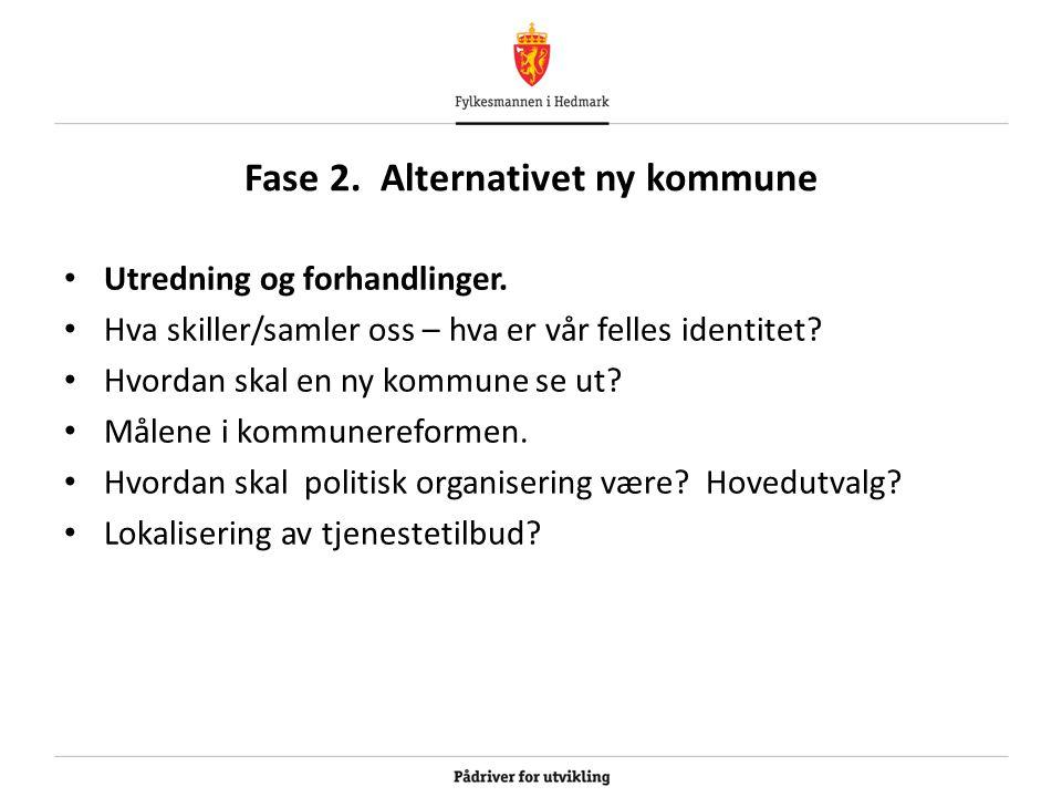 Fase 2. Alternativet ny kommune Utredning og forhandlinger. Hva skiller/samler oss – hva er vår felles identitet? Hvordan skal en ny kommune se ut? Må