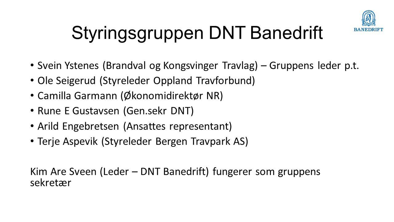 Styringsgruppen DNT Banedrift Svein Ystenes (Brandval og Kongsvinger Travlag) – Gruppens leder p.t.