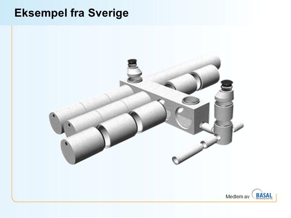 Medlem av Eksempel fra Sverige