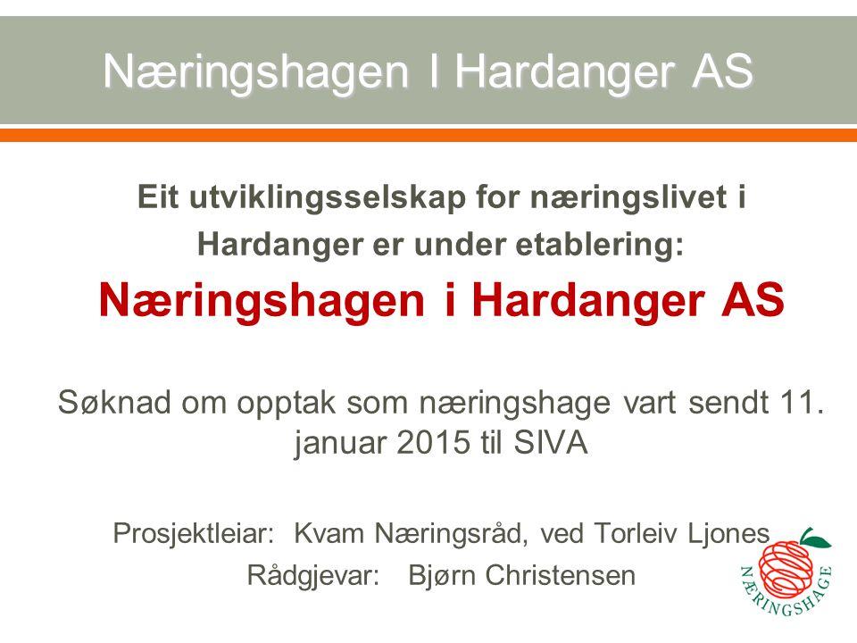 Næringshagen i Hardanger AS Finansiering: Fylkeskommunen minimum 300.000 pr år i 10 år.