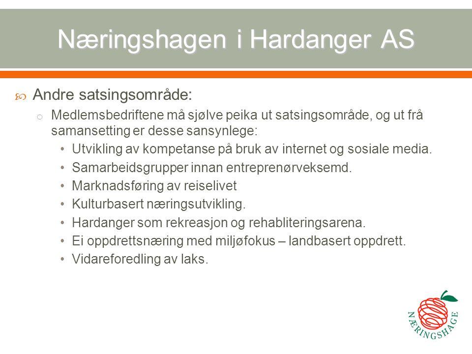Næringshagen i Hardanger AS  Andre satsingsområde: o Medlemsbedriftene må sjølve peika ut satsingsområde, og ut frå samansetting er desse sansynlege: