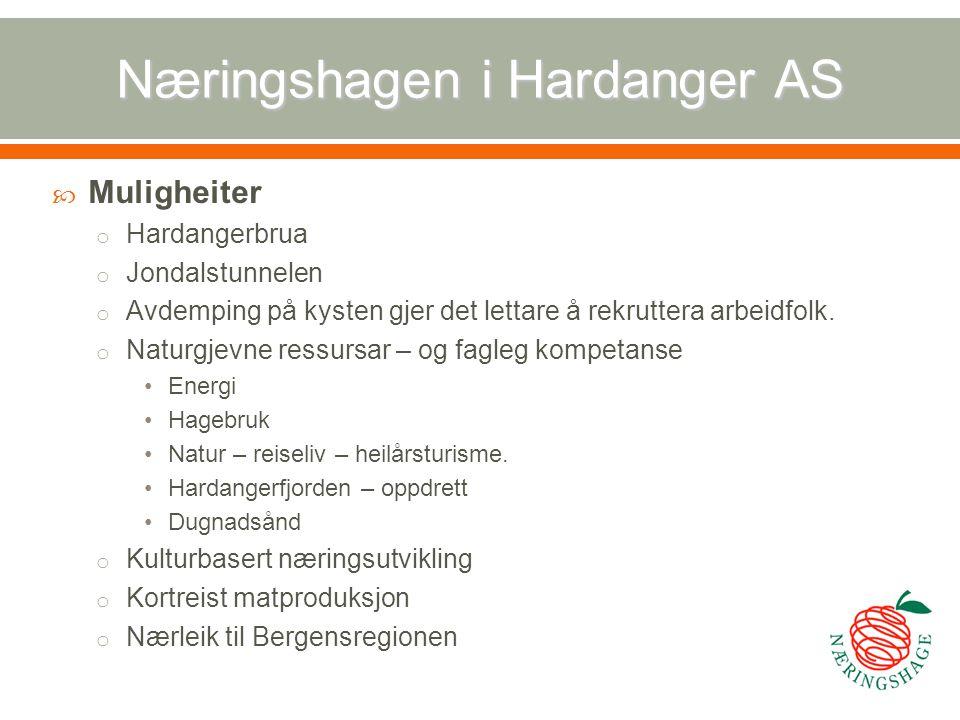 Næringshagen i Hardanger AS  Muligheiter o Hardangerbrua o Jondalstunnelen o Avdemping på kysten gjer det lettare å rekruttera arbeidfolk. o Naturgje