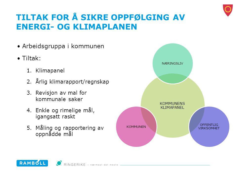 TILTAK FOR Å SIKRE OPPFØLGING AV ENERGI- OG KLIMAPLANEN Arbeidsgruppa i kommunen Tiltak: 1.Klimapanel 2.Årlig klimarapport/regnskap 3.Revisjon av mal