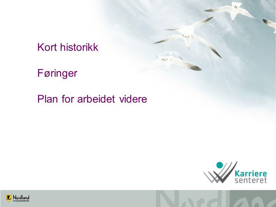 Kort historikk Føringer Plan for arbeidet videre