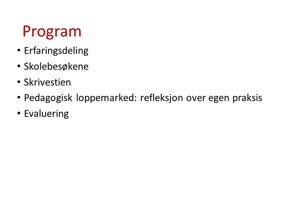 Program Erfaringsdeling Skolebesøkene Skrivestien Pedagogisk loppemarked: refleksjon over egen praksis Evaluering