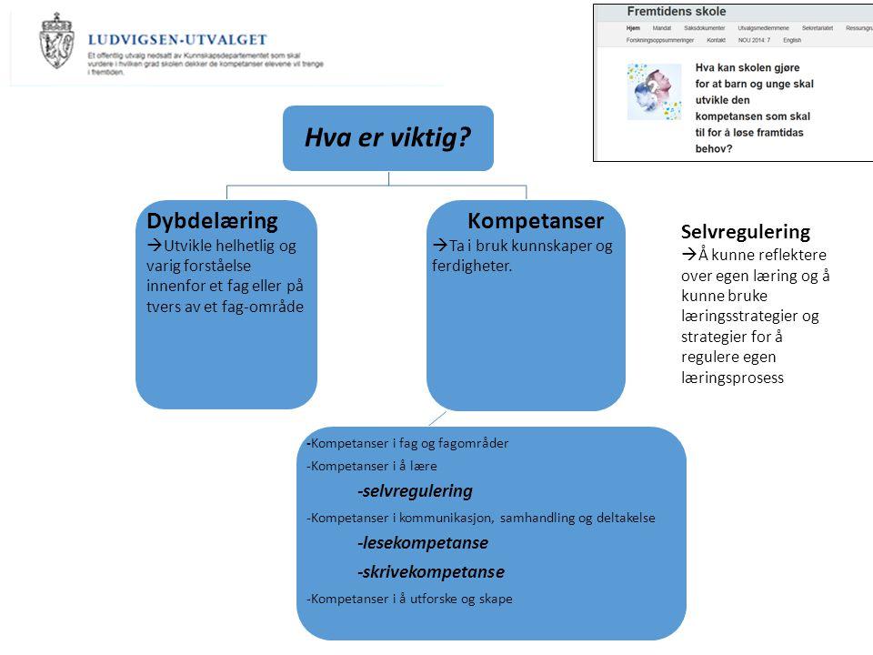 Hva er viktig? -Kompetanser i fag og fagområder -Kompetanser i å lære -selvregulering -Kompetanser i kommunikasjon, samhandling og deltakelse -lesekom
