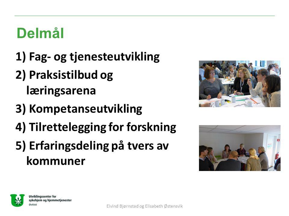 1) Fag- og tjenesteutvikling 2) Praksistilbud og læringsarena 3) Kompetanseutvikling 4) Tilrettelegging for forskning 5) Erfaringsdeling på tvers av k