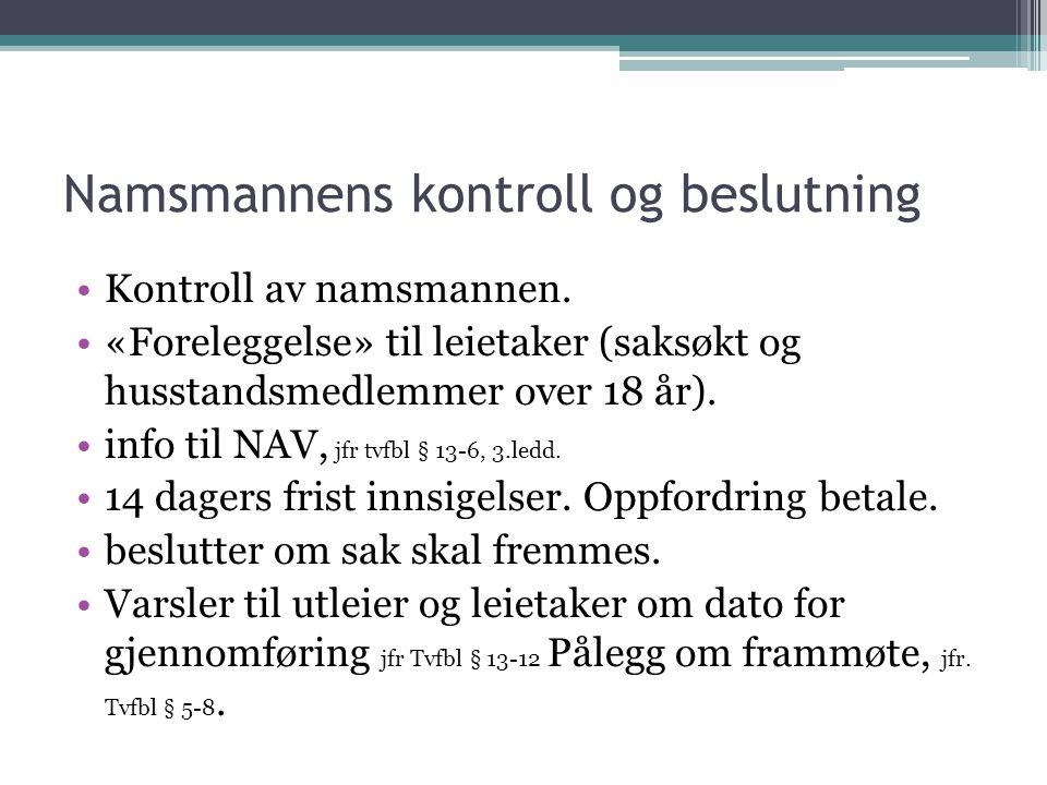 Namsmannens kontroll og beslutning Kontroll av namsmannen.