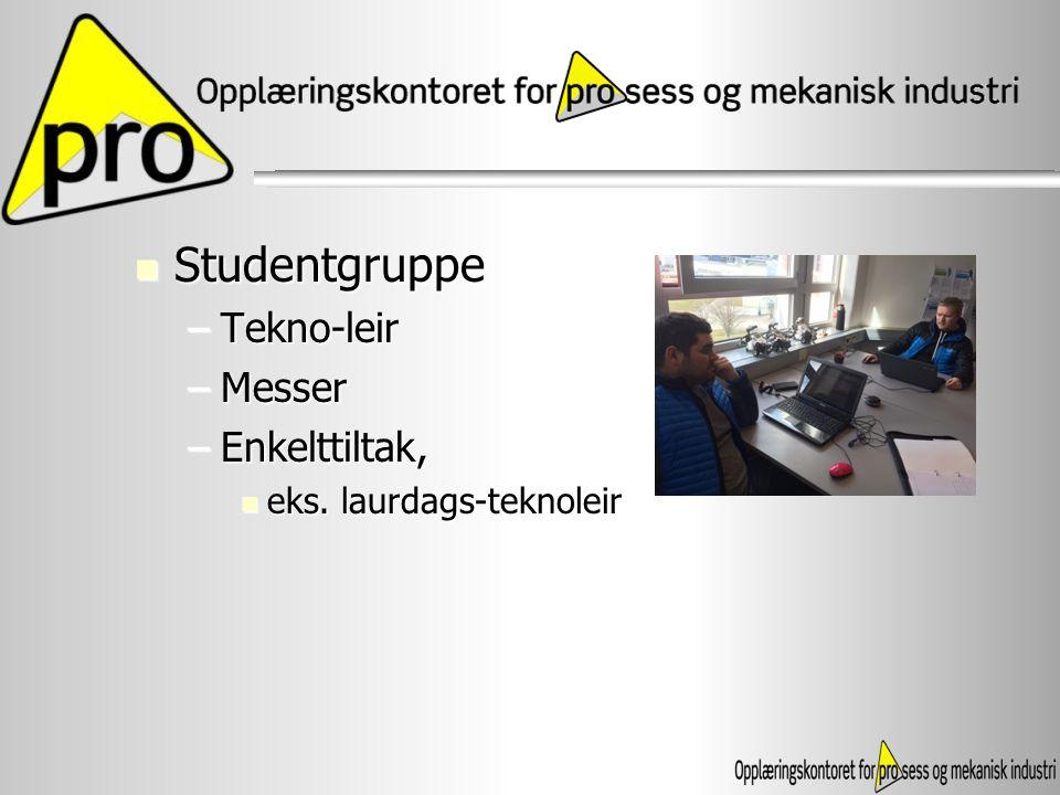 Studentgruppe Studentgruppe –Tekno-leir –Messer –Enkelttiltak, eks. laurdags-teknoleir eks. laurdags-teknoleir