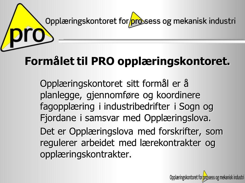 PRO vart etablert i 1998 som ei stifting PRO vart etablert i 1998 som ei stifting Starta med 10 lærlinger i tre bedrifter.
