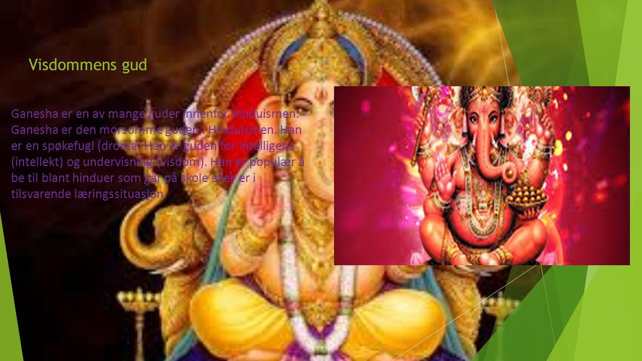 Visdommens gud Ganesha er en av mange guder innenfor hinduismen. Ganesha er den morsomme guden i Hinduismen. Han er en spøkefugl (droma) Han er guden