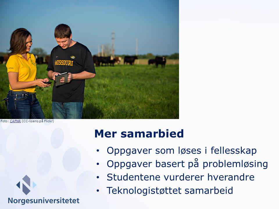 Oppgaver som løses i fellesskap Oppgaver basert på problemløsing Studentene vurderer hverandre Teknologistøttet samarbeid Mer samarbied Foto: CAFNR (CC-lisens på Flickr)CAFNR