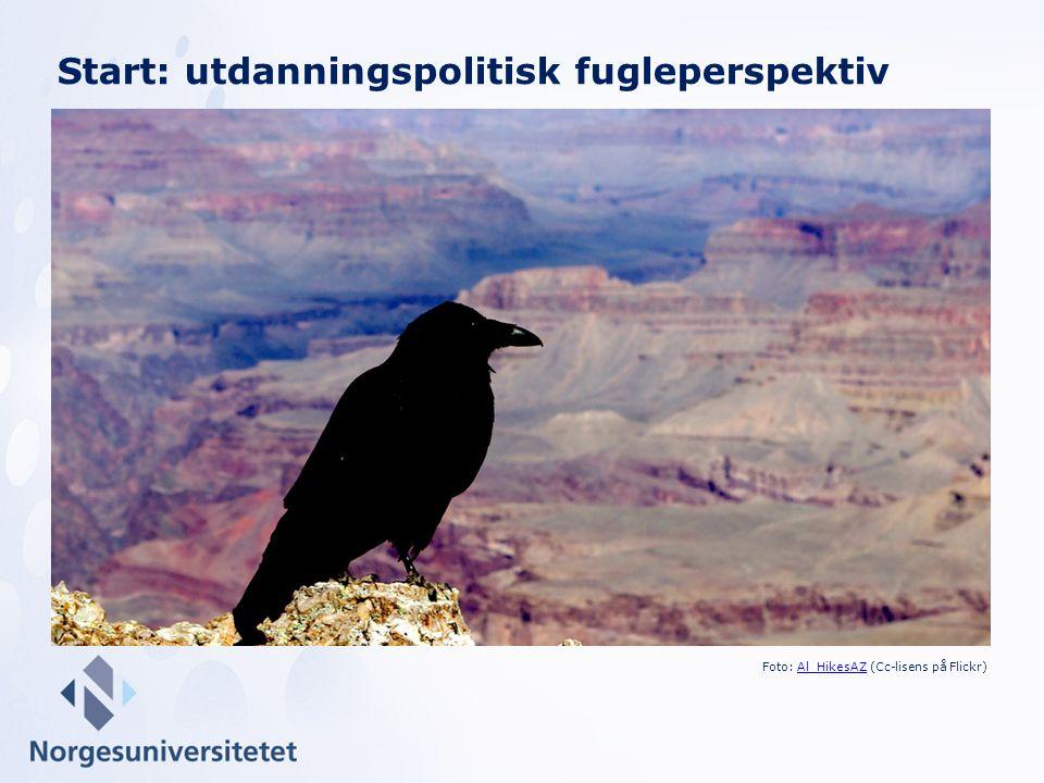 Start: utdanningspolitisk fugleperspektiv Foto: Al_HikesAZ (Cc-lisens på Flickr)Al_HikesAZ