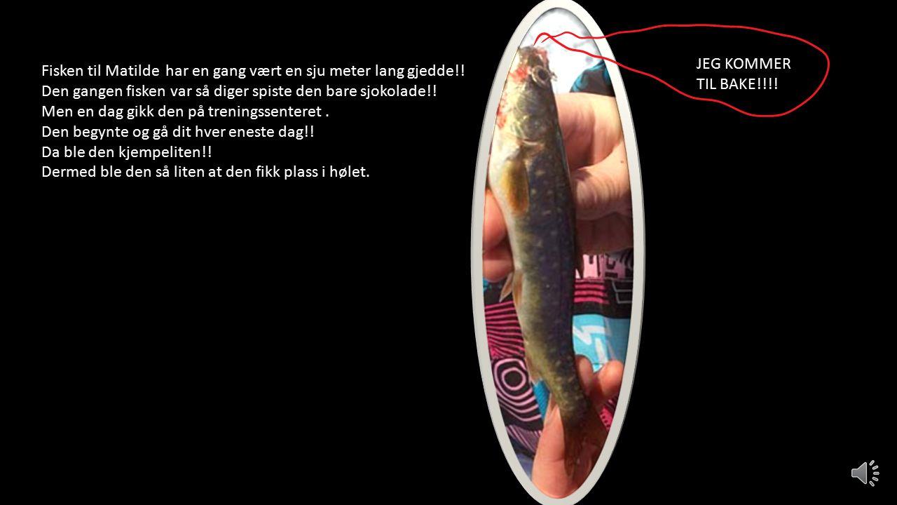 DET BLE FISK!!!!!!!. FØRSTE OG NESTEN ENESTE FISK FIKK MATILDE.