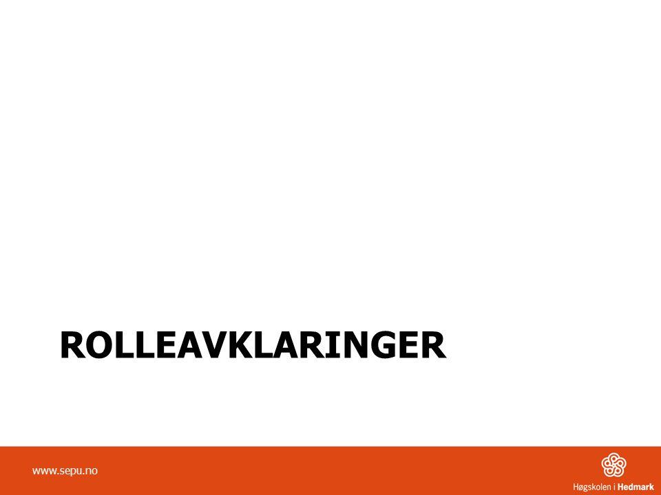 ROLLEAVKLARINGER www.sepu.no